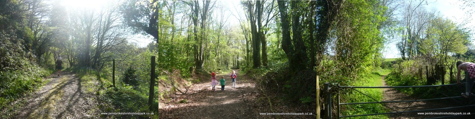 Walk to Nevern